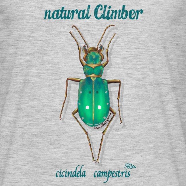 Natural Climber Cicindela