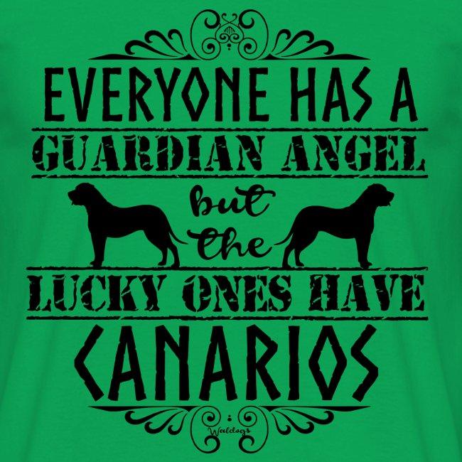 Canario Angels II