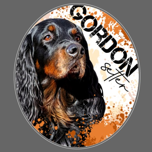 Gordon Setter Splash - Miesten t-paita