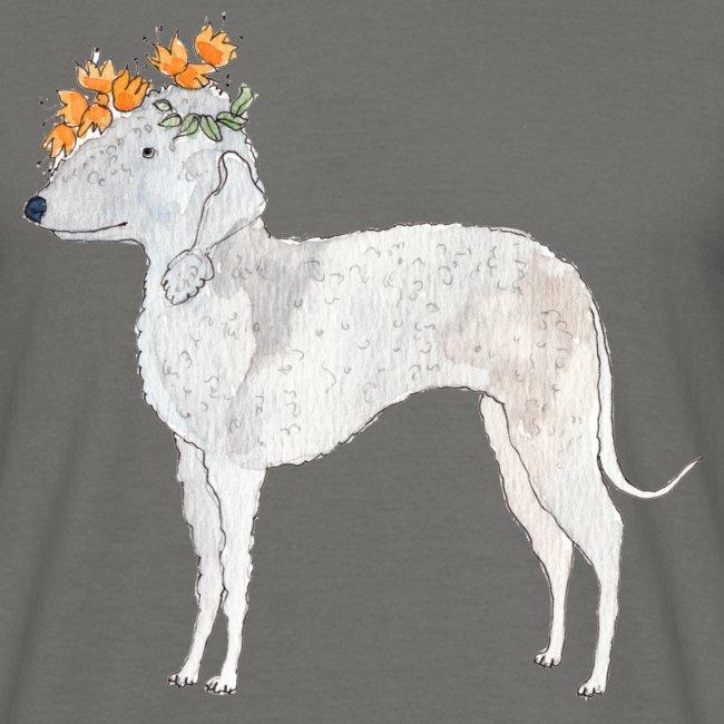 bedlington with flower