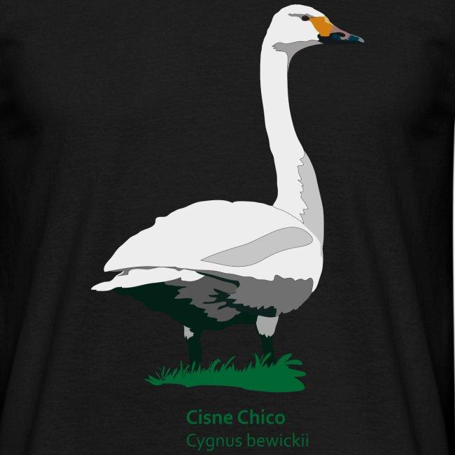 Cisne-Chico