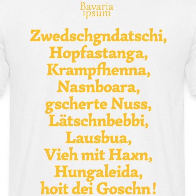 Bayrische Schimpfwörter Nr.3