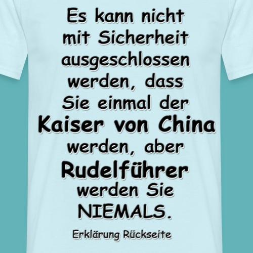 hs2 v - Männer T-Shirt