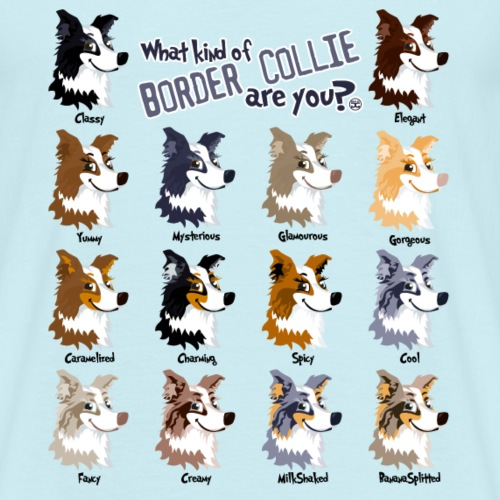 What Kind Of Border?