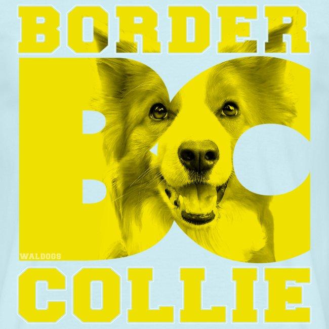 Border BC Collie VI