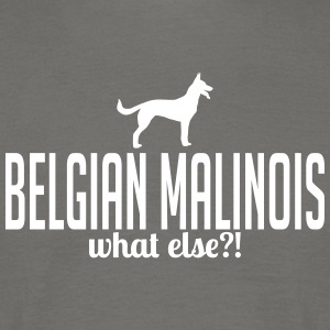 BELGISK Malinois whatelse - T-skjorte for menn
