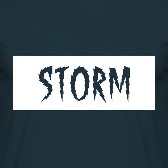 Storm box logo