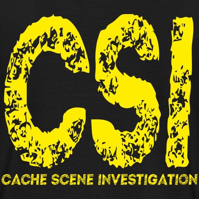 Cache Scene Investigation