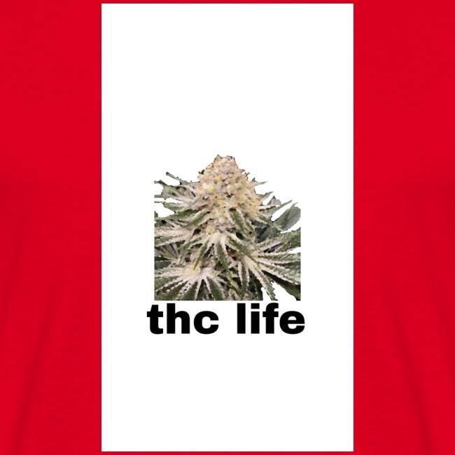 THCE LIFE