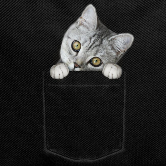 Vorschau: cat pocket - Rucksack