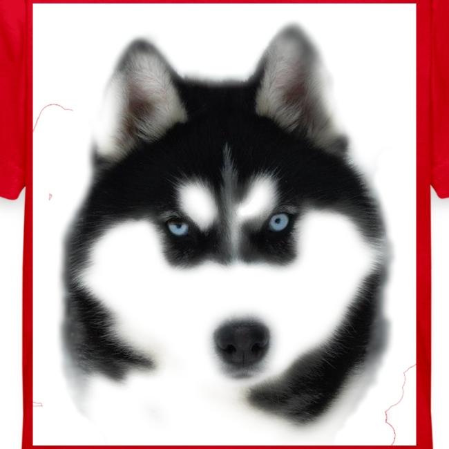 Siberian Husky Head