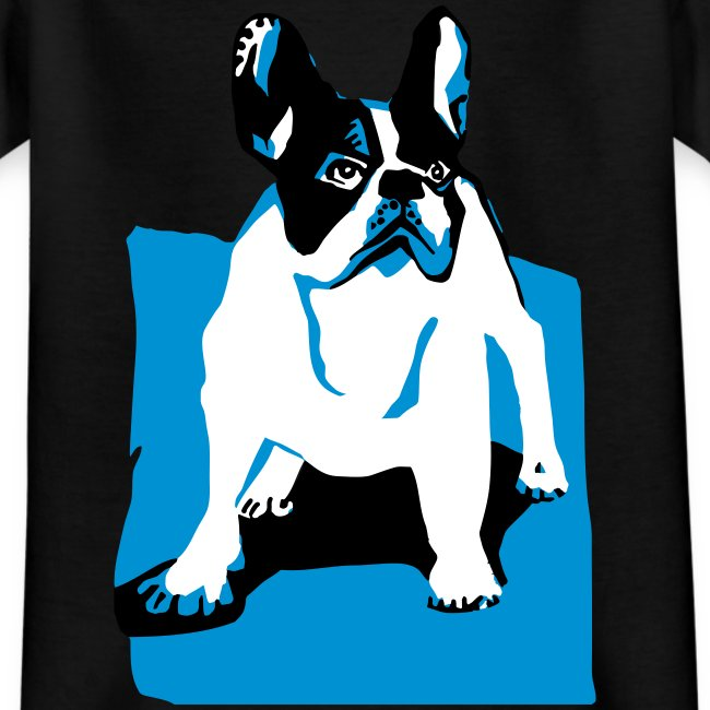 franz bulldog