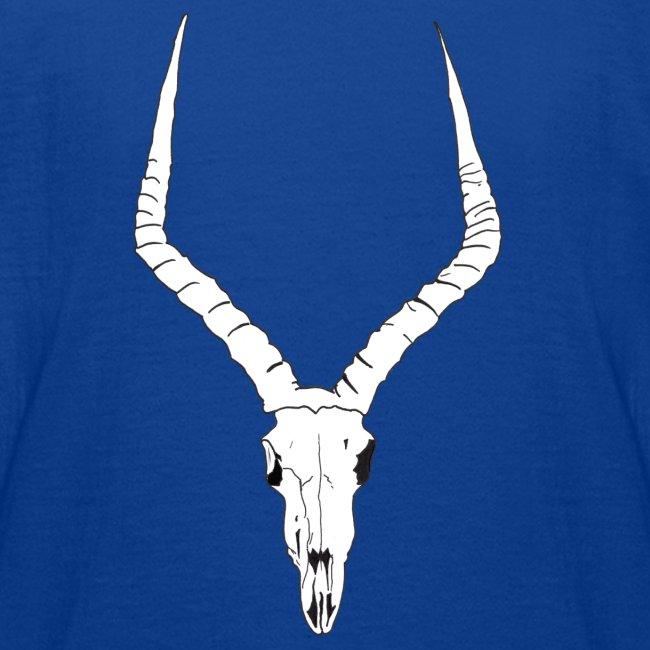 Antelope ANIMAL skull