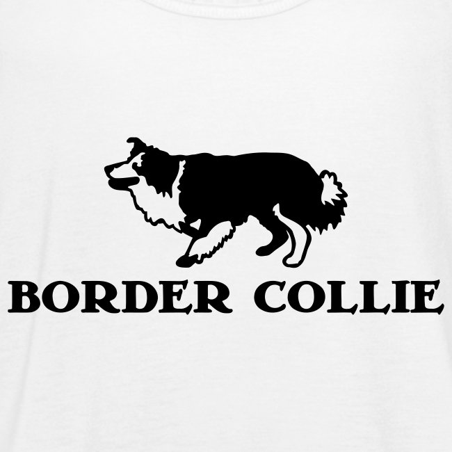 Border Collie 4