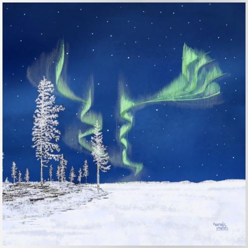 winter met noorderlicht - Gourde avec paille intégrée