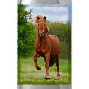 Icelandic horse running in tölt over meadow horse photo - Water Bottle