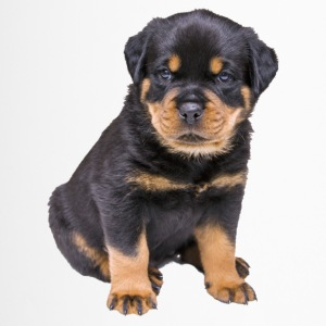 dolce Rottweiler - Tazza termica