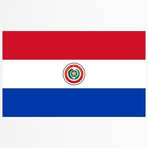 Nationalflagge von Paraguay - Thermobecher