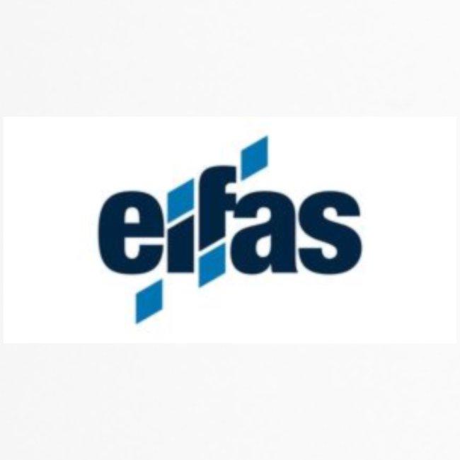 eifas_logo (2160x1080)_th