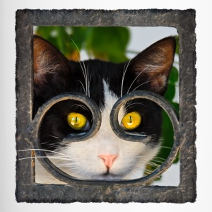 Cat looks curiously through wrought iron fence - Travel Mug