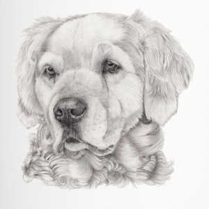 golden retriever - Termokrus
