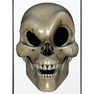 Smart Skull - iPhone 4/4s Hard Case