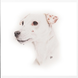 Jack Russell, Trillerpfeife - iPhone 4/4s Hard Case