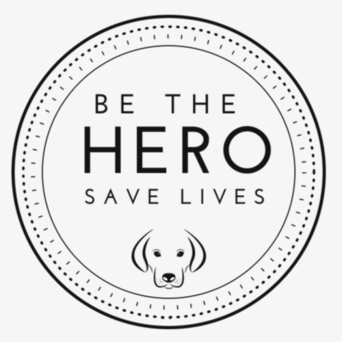 BE THE HERO - Männer Premium T-Shirt