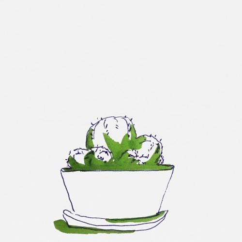 Kaktus Marrakesch No 1 - Männer Premium T-Shirt
