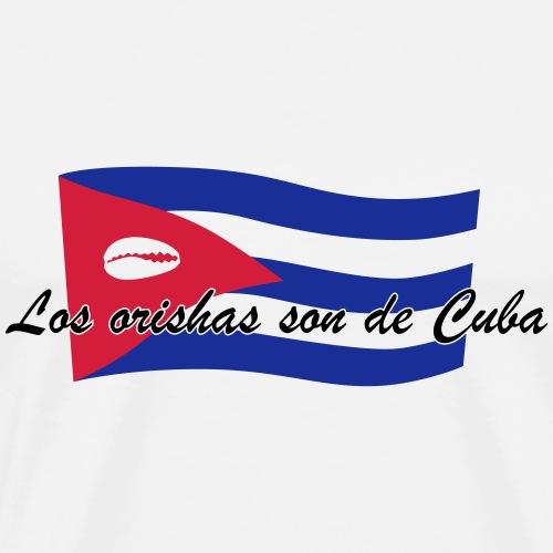Los orishas son de Cuba 05 - Mannen Premium T-shirt