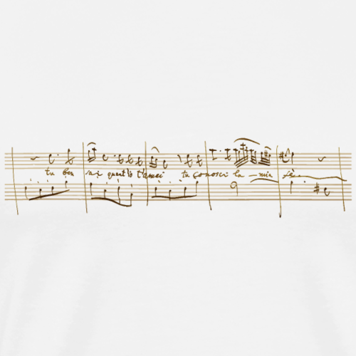 Don Giovanni: Donna Anna – «Tu ben sai …» (hell) - Männer Premium T-Shirt