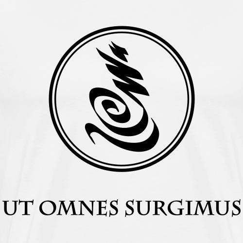 Spirit Power LIFE - Ut Omnes Surgimus - Männer Premium T-Shirt