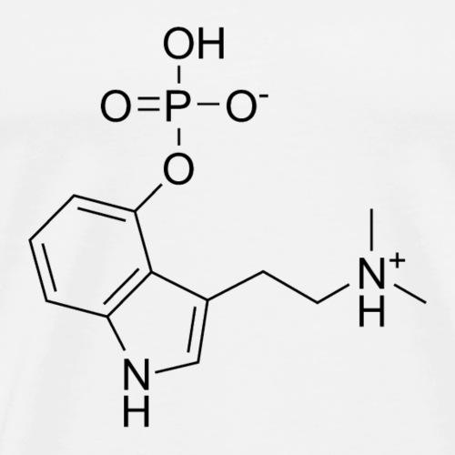 Psilocybin_chemical_structure-png - Premium-T-shirt herr