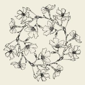 Blütenkreis - Männer Premium T-Shirt