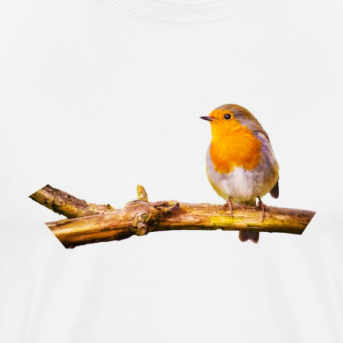 Robin - Men's Premium T-Shirt