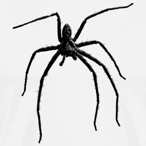 Spider / Black Widow + skalle med spindelfobi - Premium-T-shirt herr