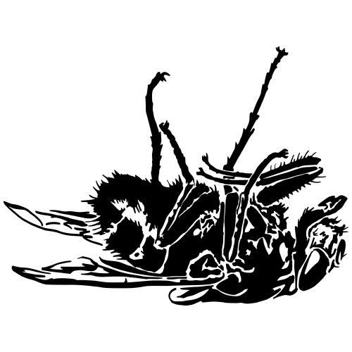 mouche morte - Casquette classique bio