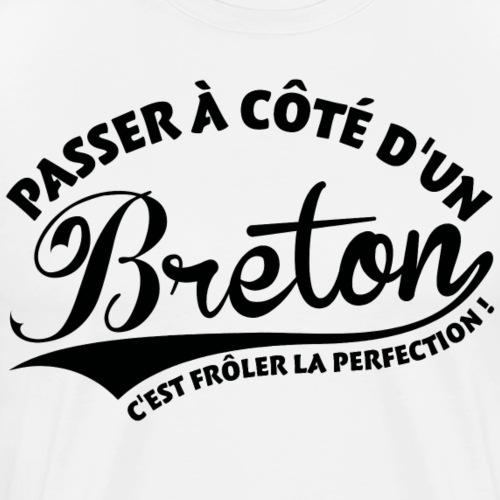 Breton Perfection - T-shirt Premium Homme