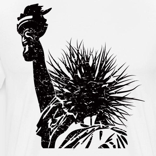 usa-liberty