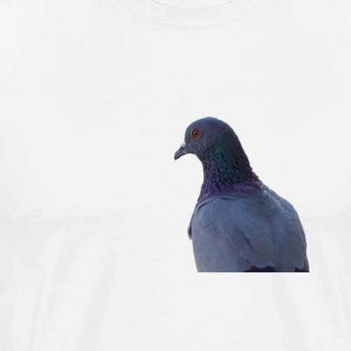 Piccione - Maglietta Premium da uomo