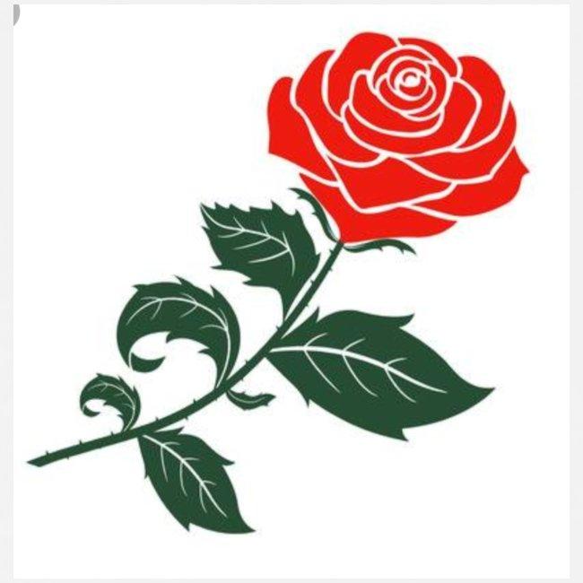 Rose anti social