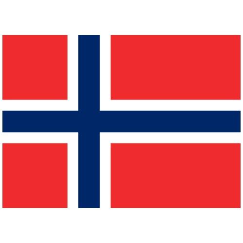 Bandera de Noruega - Camiseta premium hombre