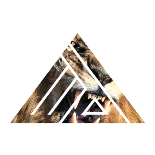 Edi Triangle Logo, Lion - Mannen Premium T-shirt