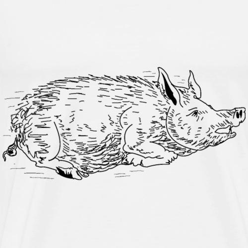 Wildschwein 2c