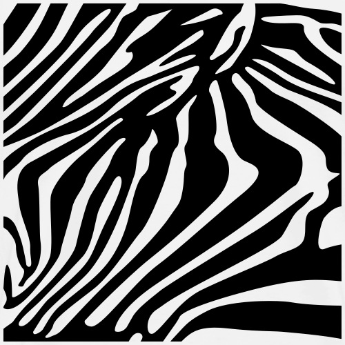 Rayures zebre - T-shirt Premium Homme