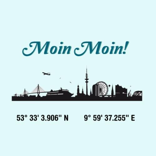 SKYLINE HAMBURG - Männer Premium T-Shirt