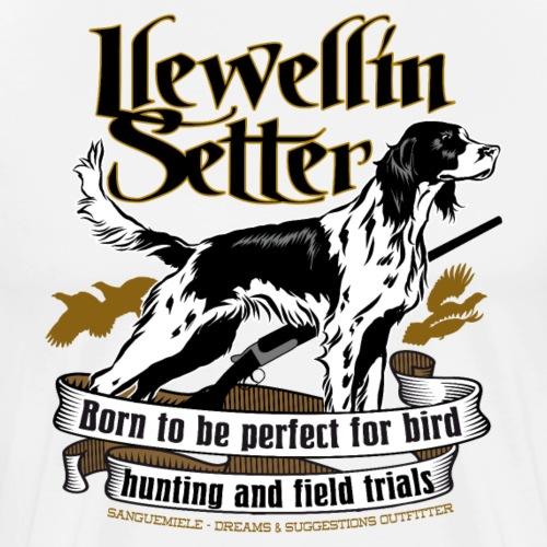 23 llewellin setter - Maglietta Premium da uomo