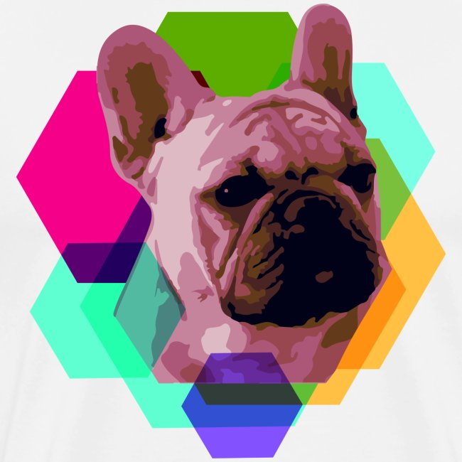 French Bulldog head