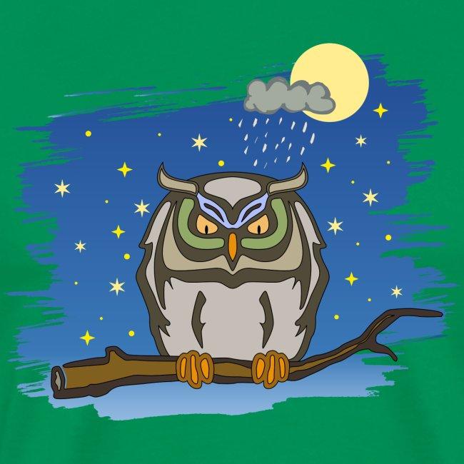 Eule Uhu Nacht Vollmond Regen Wolke Sterne Himmel