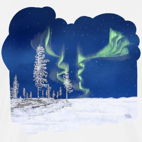 hiver avec des aurores boréales